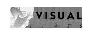 logo_visual lines